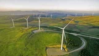 Enerjisa Enerji'den, Yeşil Mutabakat Eylem Planlarına Destek!